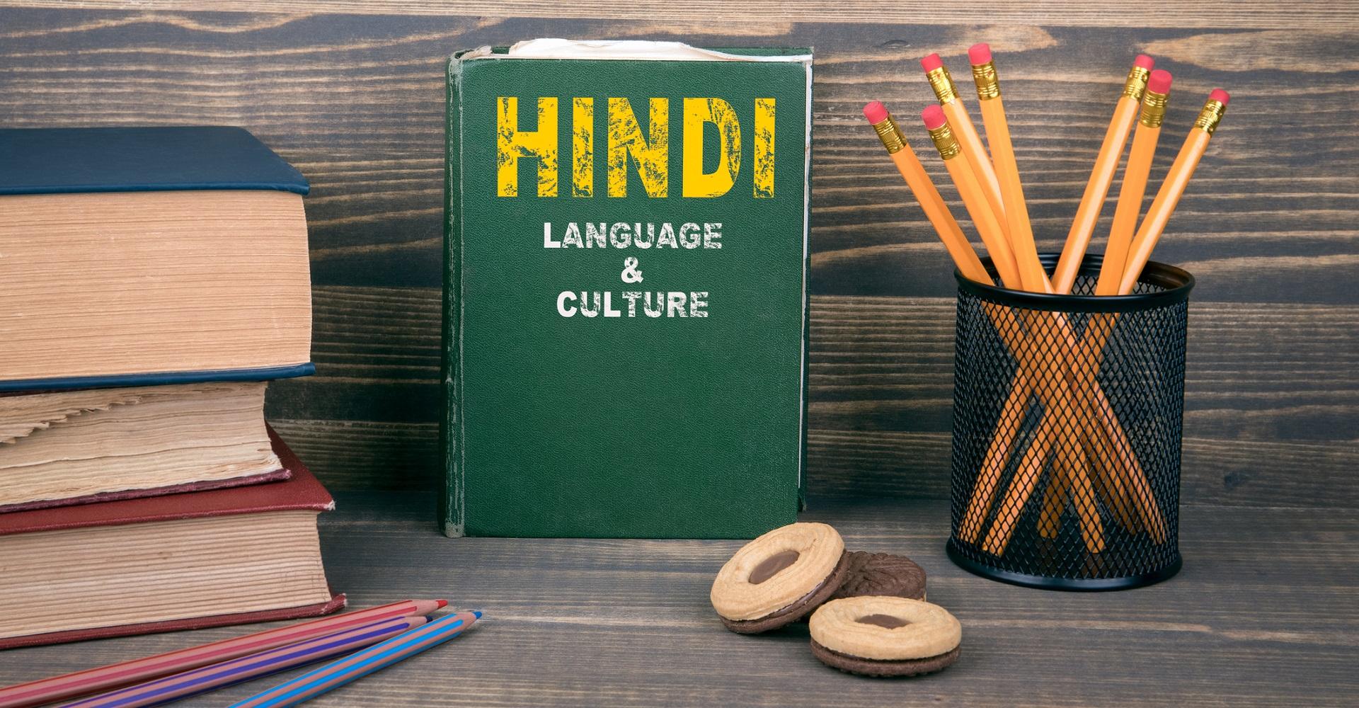 Lehrbuch Hindi