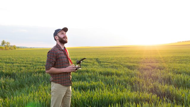 Drohnenpilot fliegt Drohne im Grünen