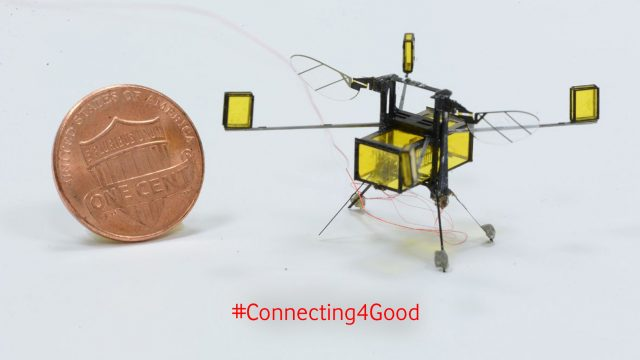 Roboter-Bienen, Solar-Energie, Wyss Institute at Harvard University