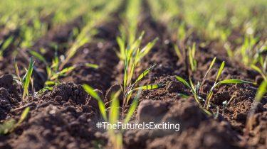The Future is Exciting: Unkrautroboter machen nachhaltigen Ackerbau erschwinglich