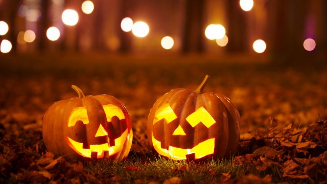 Zwei Halloween-Kürbisse stehen im Wald.