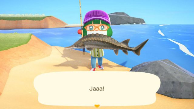 Einen Fisch in Animal Crossing: New Horizons fangen.
