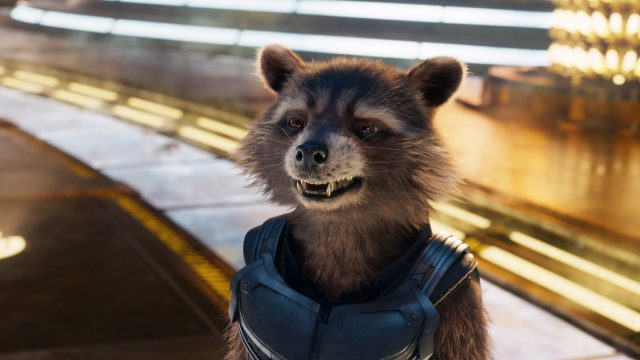 """""""Guardians of the Galaxy: Rocket"""""""