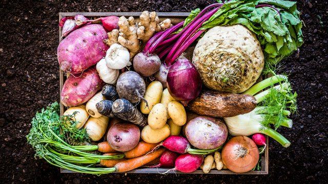 Eine Holzkiste voller Gemüse wie Kartoffeln, Möhren, Knollen und Ingwer.