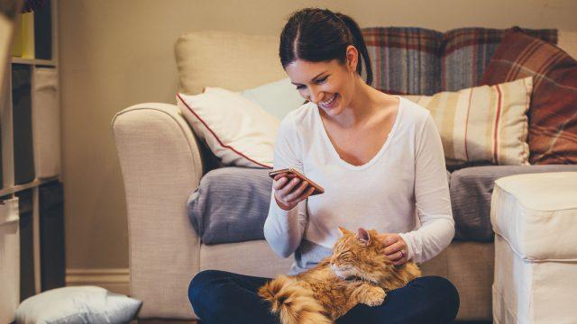 Frau mit Android-Smartphone und Katze auf dem Schoß