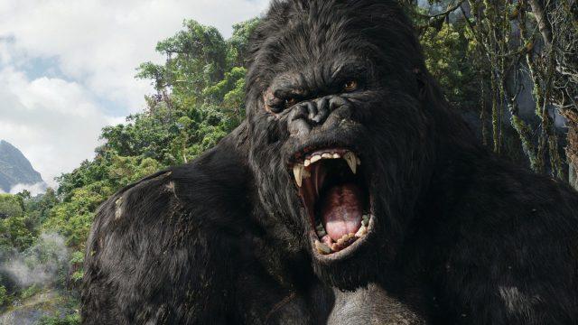 "Bild aus dem Film ""King Kong"" (2005)"