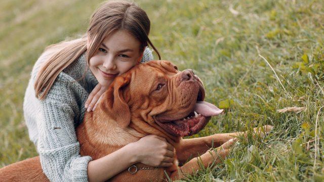 Mensch und Hund: Die besten Hunde-Apps