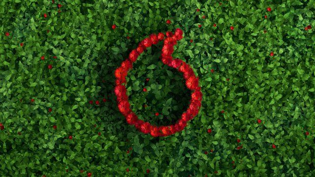 Das Vodafone-Speechmark wächst mit Blumen auf einer Ecke.