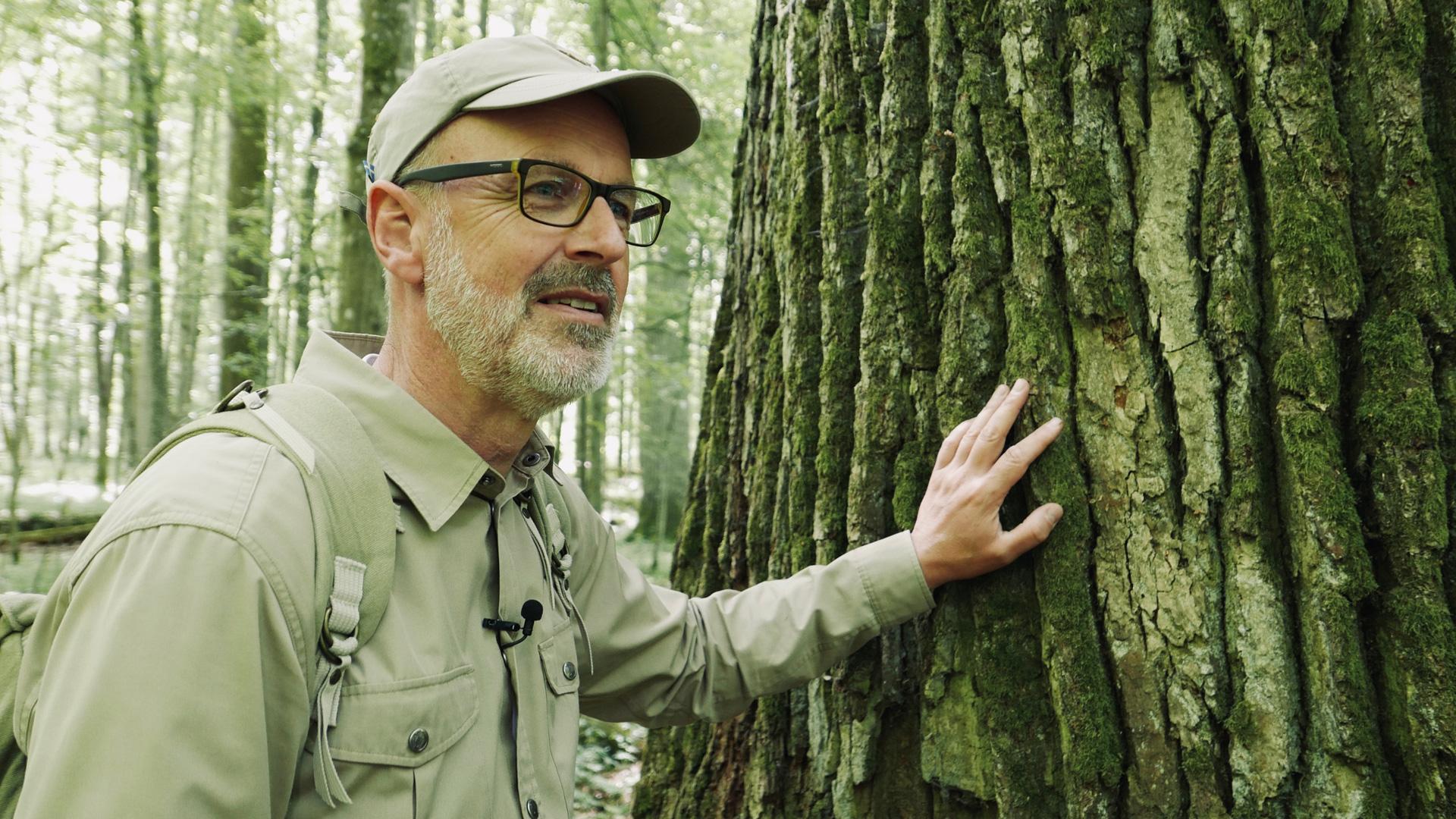 Peter Wohlleben steht im Wald