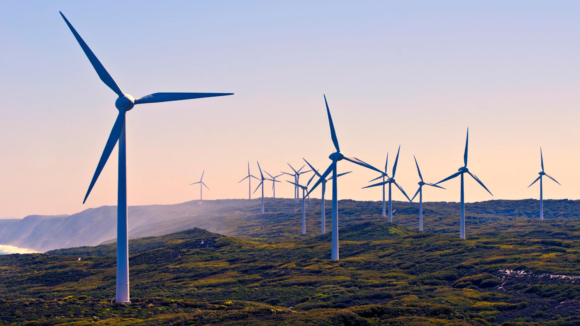 Mehrere Windräder drehen sich auf einer Anhöhe.