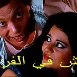 خليها تكاكي.. هـ تشارك في حملة مقاطعة الفراخ؟