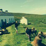 لمدة 6 أشهر.. إليك فرصة العمر في ايرلندا!