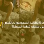 لماذا يطالب السعوديون بالقبض على معنف قطط المدينة؟