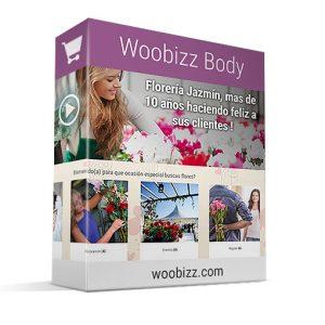 woobizz-body