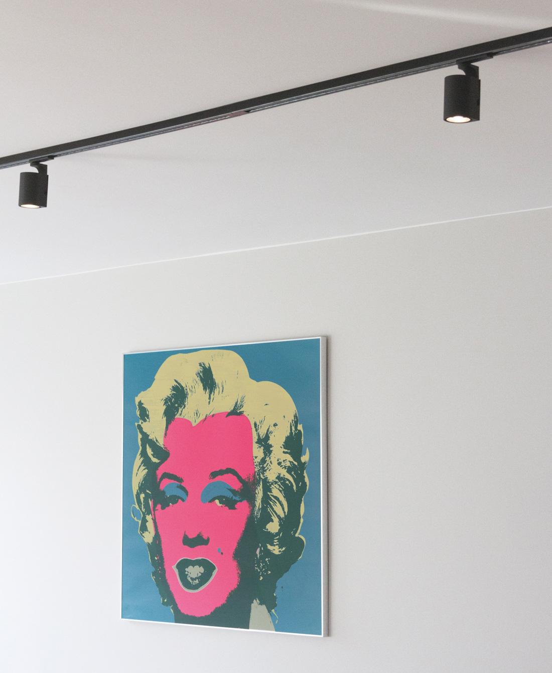 LED-railspots om een mooi werk aan de muur te verlichten.