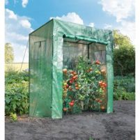 Tomato serre tuinkas-Moestuin