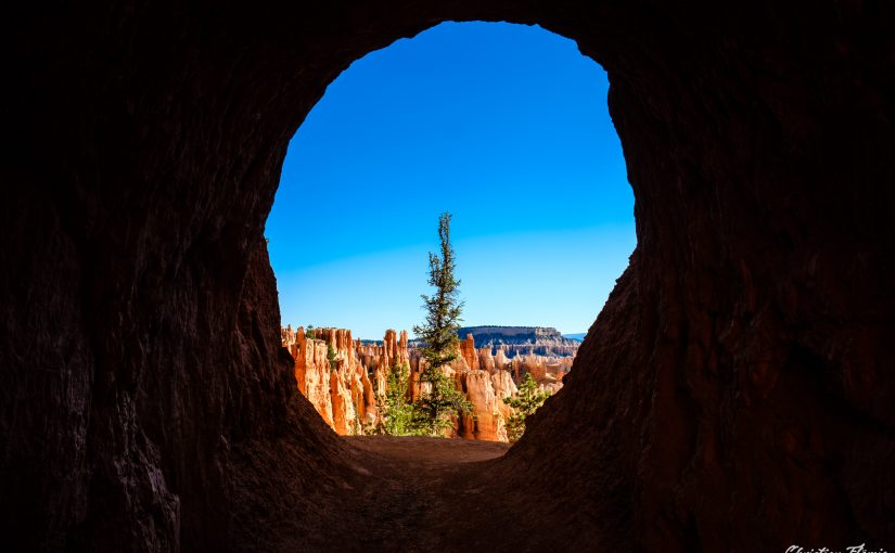 USA – Canyons & Solar Eclipse – Tag 9 – Bryce Canyon