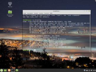 Linux VMWare-Tools installieren