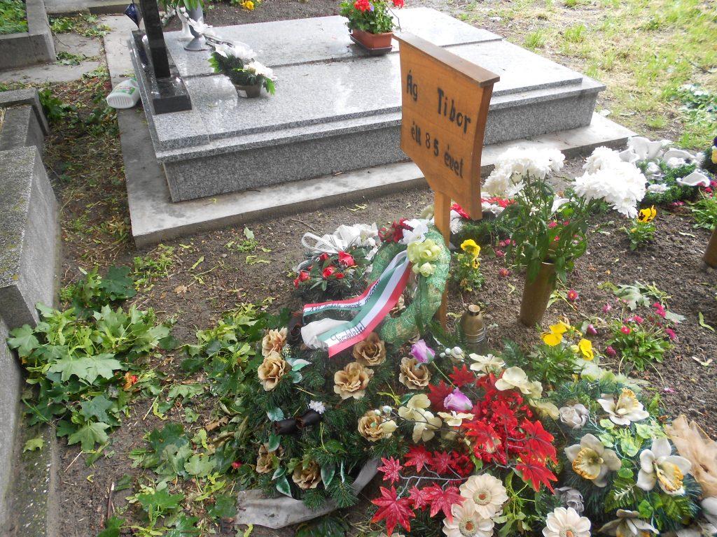 A nagymegyeri református temető