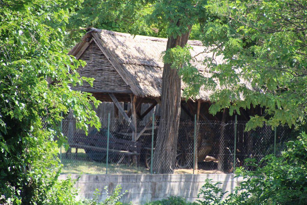 Martosi tájház