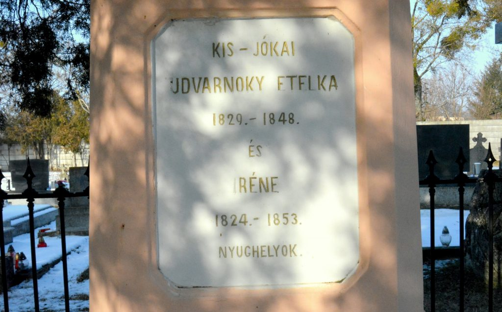 gomba-udvarnoky-anna-sirja (13)