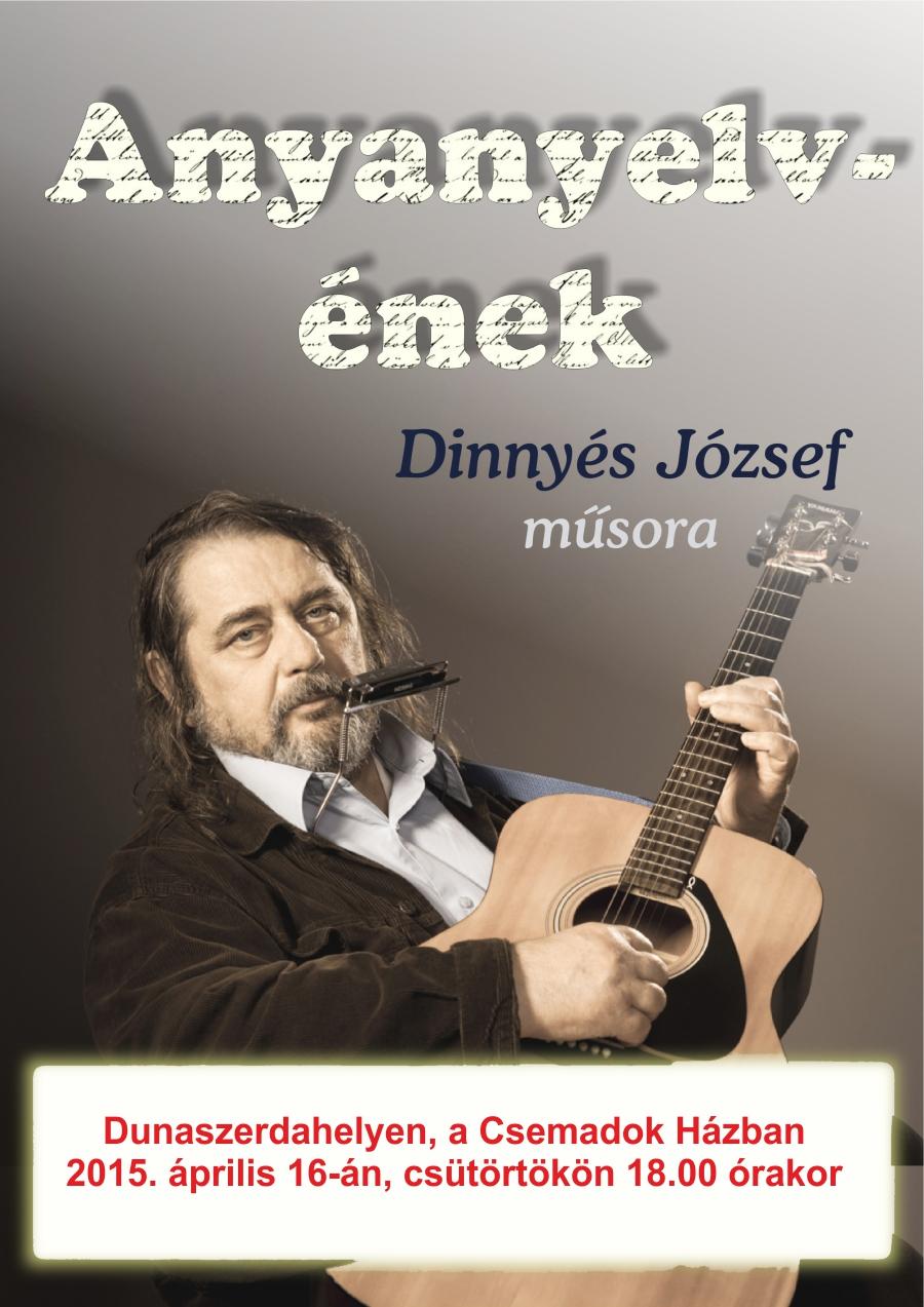 dunaszerdahely-dinnyes-koncert-2015