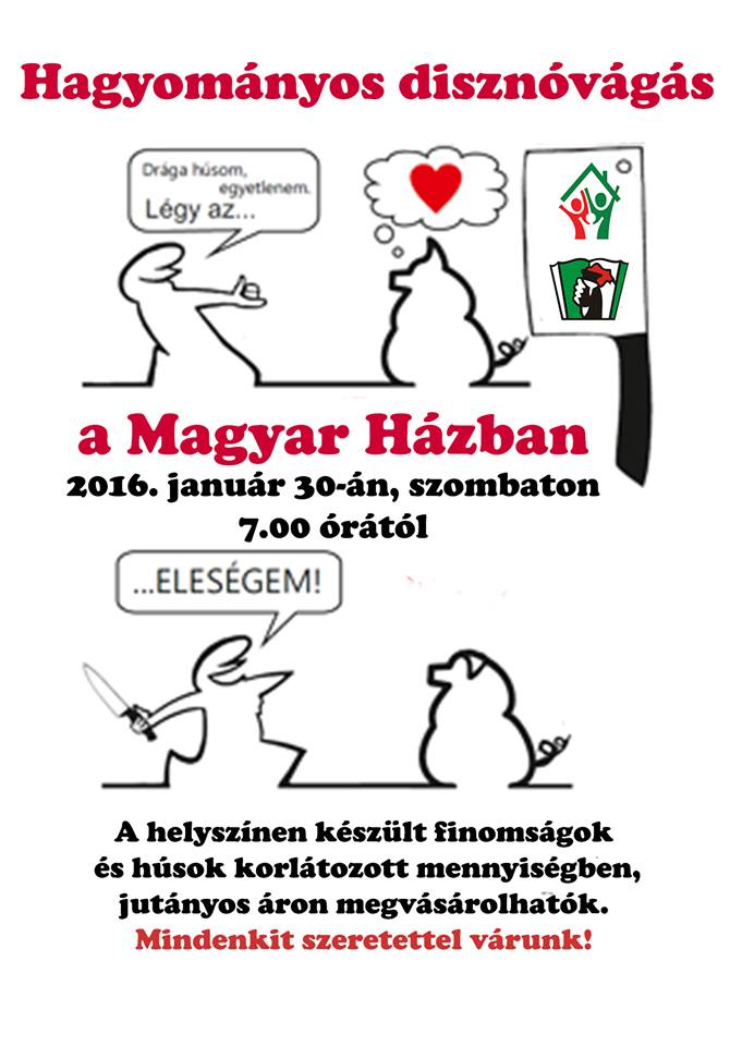 zseliz-disznovagas-2016
