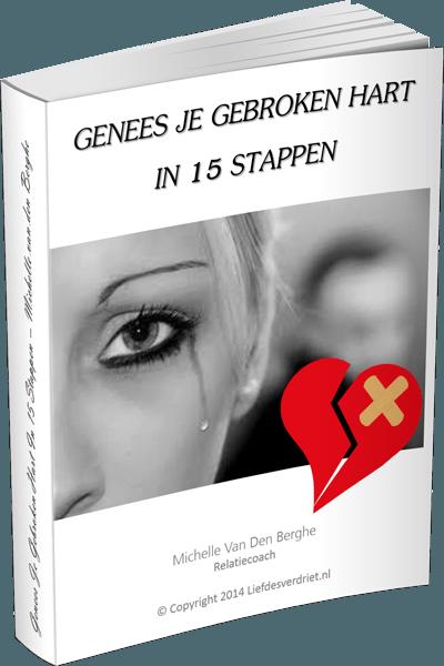 boek genees je gebroken hart