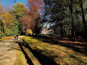 Vasárnap délutáni program: őszi séta a kastélyparkban