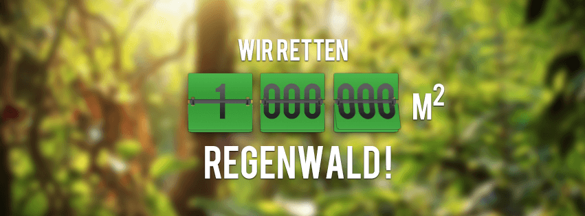 regenwald spenden