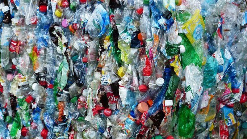 Mit iamgreen wird dein Leben plastikfrei!