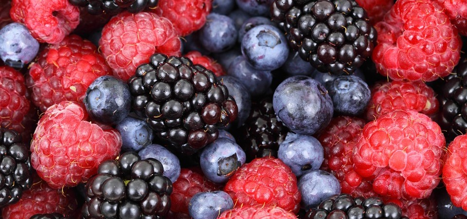 Top5: Saisonale Lebensmittel im August
