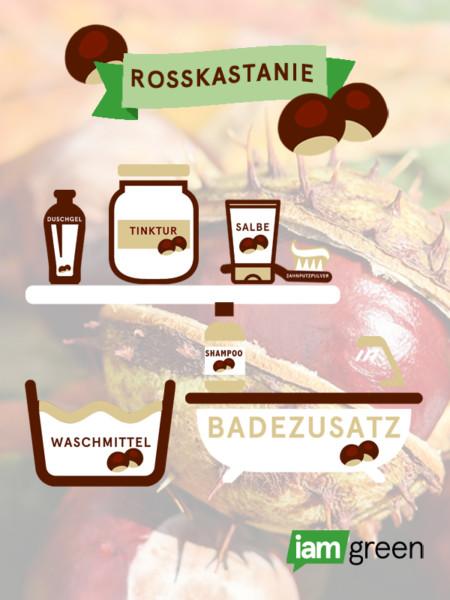 rosskastanie_infografik_2_0