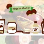 Die Kastanie, ein nachhaltiger Allrounder – Teil 2