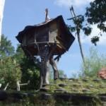 Urlaub mal ausgefallen – Baumhaushotels in Österreich
