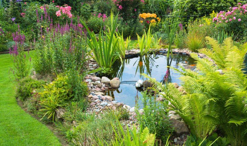 Gartenteich Nachhaltigkeit