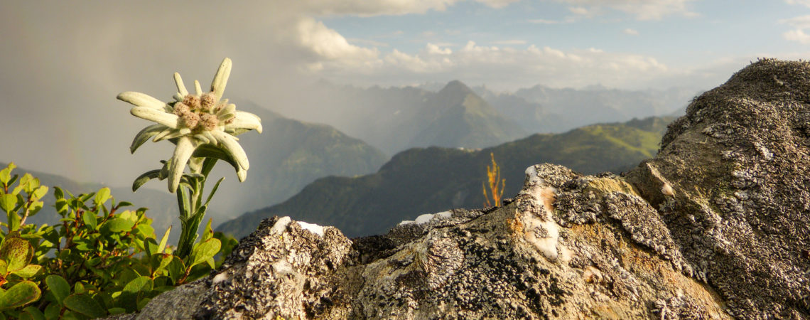 Umweltschutz Österreich