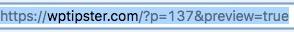 View WordPress URL parameters