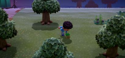 rangezockt: Das ist Animal Crossing: New Horizons