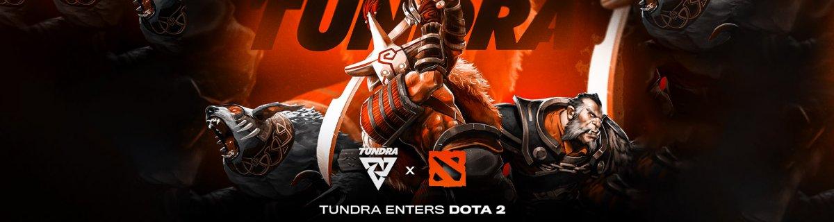 Tundra Esports Enters Dota 2