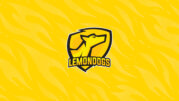 Lemondogs Announce New Csgo Roster