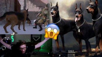 Cod Vanguard Scumps Hunde Wenden Sich Gegen Ihn