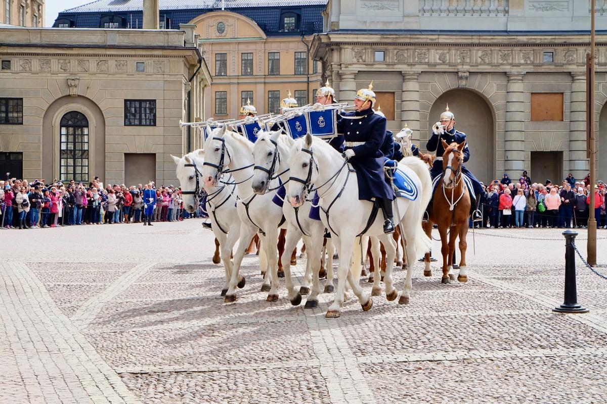 Королевская армия Швеции