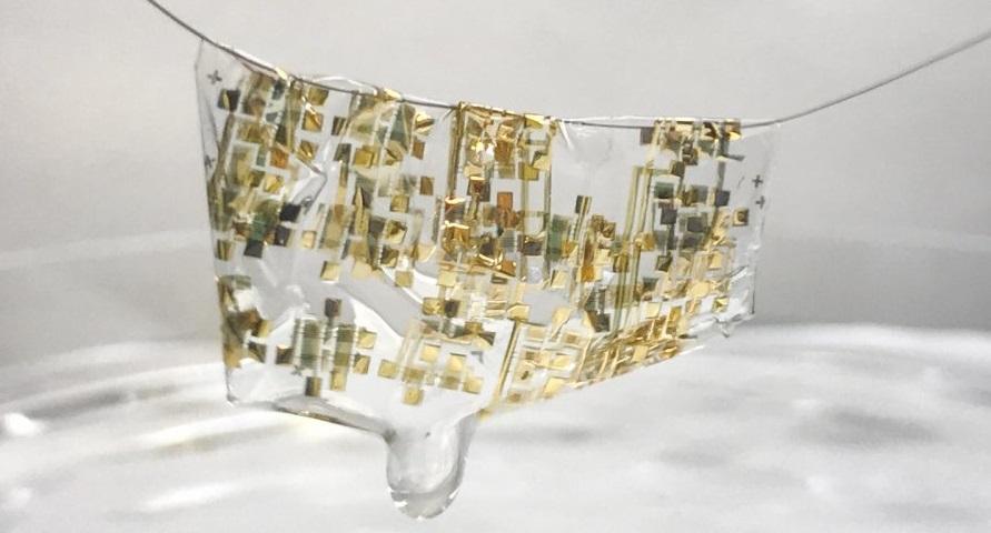 Новое открытие Стэнфордских ученых — биоразлагаемая электроника