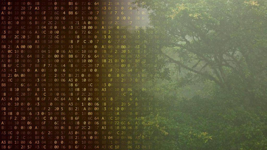 Может ли криптографическая технология биткоина помочь сохранить окружающую среду?