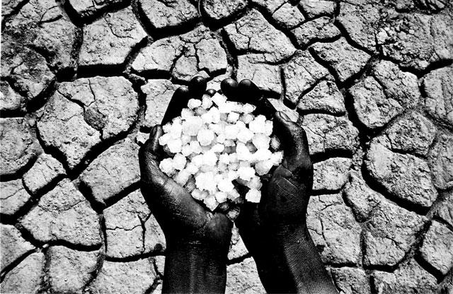 Изменение климата. Причины, последствия, предлагаемые улучшения и противоборства