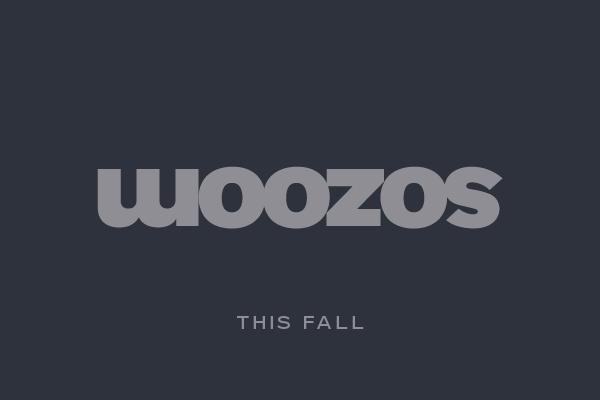 Sozoom – творческие технократы на службе города