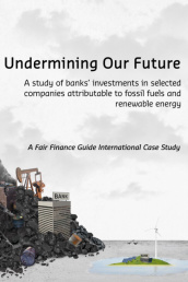 Undermining Our Future cover