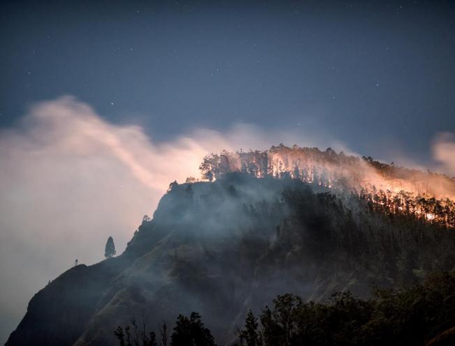 Achter verwoestende bosbranden schuilen investeringen van banken bij ons