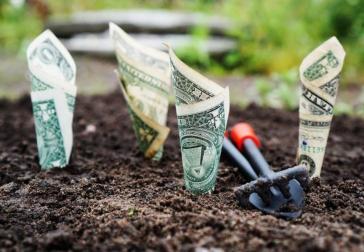 als organisatie je geld duurzaam plaatsen is minder moeilijk dan je denkt